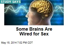 Some Brains Are Wired for Sex
