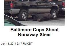 Baltimore Cops Shoot Runaway Steer