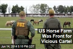 US Horse Farm Was Front for Vicious Cartel