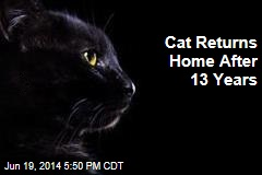 Cat Returns Home After 13 Years