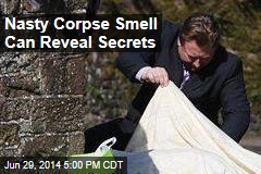 How 'Death Smell' Can Reveal a Body's Secrets