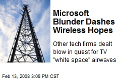 Microsoft Blunder Dashes Wireless Hopes
