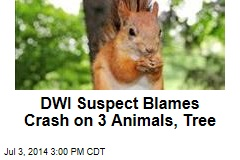 DWI Suspect Blames Crash on 3 Animals, Tree