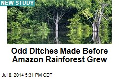 Odd Ditches Made Before Amazon Rainforest Grew