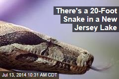 There's a 20-Foot Snake in a New Jersey Lake