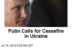 Putin Calls for Ceasefire in Ukraine