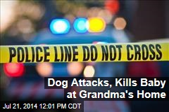 Dog Attacks, Kills Baby at Grandma's Home