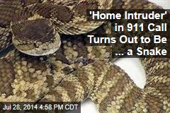 'Home Intruder' in 911 Call Turns Out to Be ... a Snake