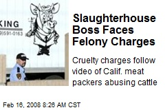 Slaughterhouse Boss Faces Felony Charges