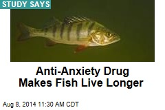 Anti-Anxiety Drug Makes Fish Live Longer