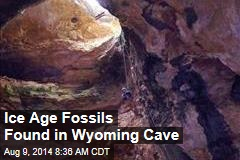 Ice Age Fossils Found in Wyoming Cave
