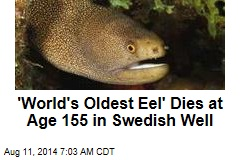 'World's Oldest Eel' Dies at Age 155 in Swedish Well