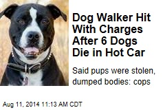 Dog Walker Hit With Charges After 6 Dogs Die in Hot Car