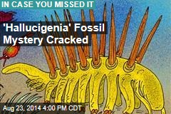 'Hallucigenia' Fossil Mystery Cracked