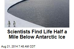 Scientists Find Life Half a Mile Below Antarctic Ice