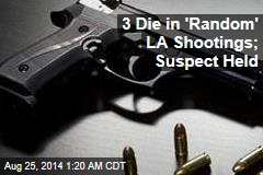 3 Die in 'Random' LA Shootings; Suspect Held