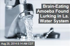 Brain-Eating Amoeba Found Lurking in La. Water System