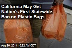 California Lawmakers OK First Statewide Ban on Plastic Bags