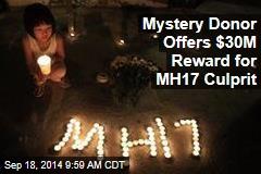 Mystery Man Offers $30M Reward for MH17 Culprit
