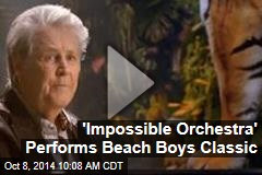 'Impossible Orchestra' Performs Beach Boys Classic