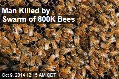 Man Killed by Swarm of 800K Bees