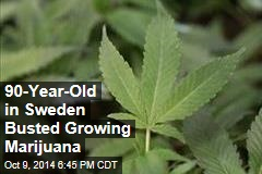 90-Year-Old in Sweden Busted Growing Marijuana