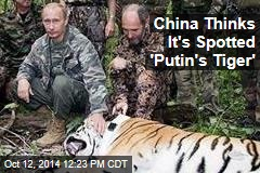 China Thinks It's Spotted 'Putin's Tiger'