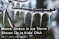 Moms' Stress in Ice Storm Shows Up in Kids' DNA