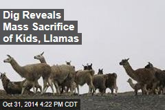 Dig Reveals Mass Sacrifice of Kids, Llamas