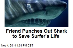 Friend Punches Out Shark to Save Surfer's Life