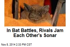 In Bat Battles, Rivals Jam Each Other's Sonar