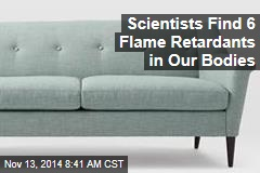 Scientists Find 6 Flame Retardants in Our Bodies