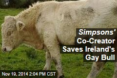 Simpsons' Co-Creator Saves Ireland's Gay Bull