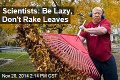 Scientists: Be Lazy, Don't Rake Leaves