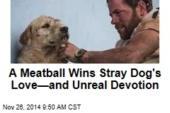 A Meatball Wins Stray Dog's Love—and Unreal Devotion