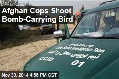Afghan Cops Shoot Bomb-Carrying Bird