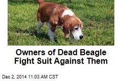 Owners of Dead Beagle Fight Suit Against Them