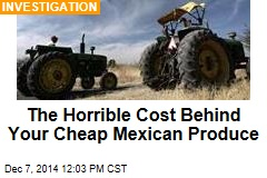 The Horrible Cost Behind Your Cheap Mexican Produce