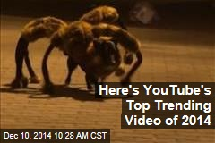 Here's YouTube's Top Trending Video of 2014