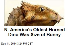 N. America's Oldest Horned Dino Was Size of Bunny