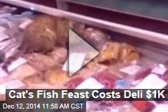 Cat's Fish Feast Costs Deli $1K