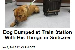 Dog Dumped at Train Station With Suitcase