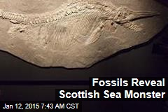 Fossils Reveal Scottish Sea Monster