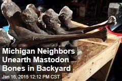 Michigan Neighbors Unearth Mastodon Bones in Backyard
