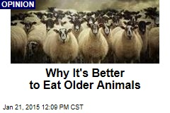 Why It's Better to Eat Older Animals