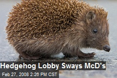Hedgehog Lobby Sways McD's