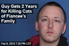 Guy Gets 2 Years for Killing Cats of Fiancee's Family