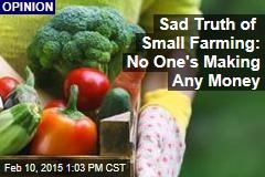 Sad Truth of Small Farming: No One's Making Any Money