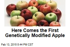 Here Comes the First Genetically Modified Apple