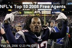 NFL's Top 10 2008 Free Agents